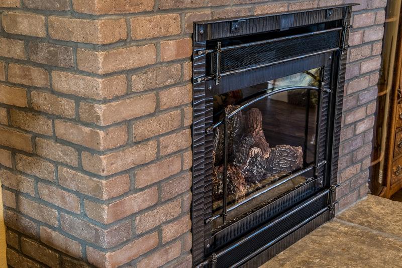 wasp nest in chimney exterminator raleigh nc